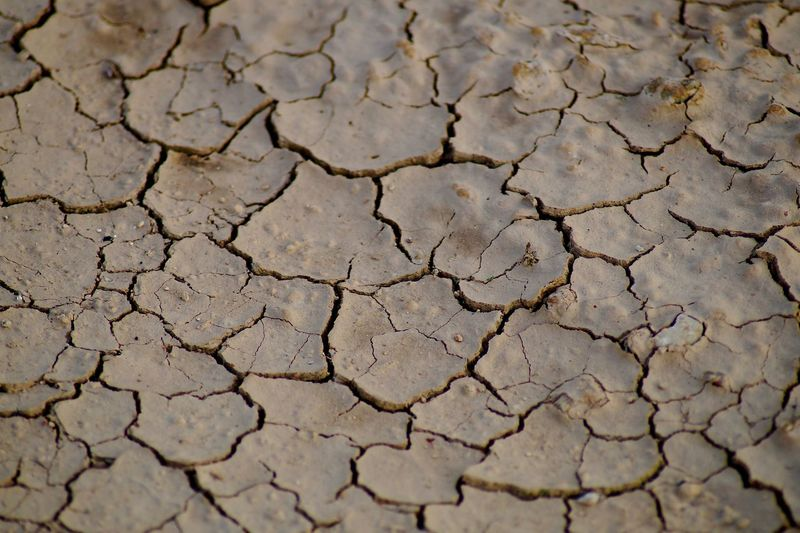 Cracked Drought