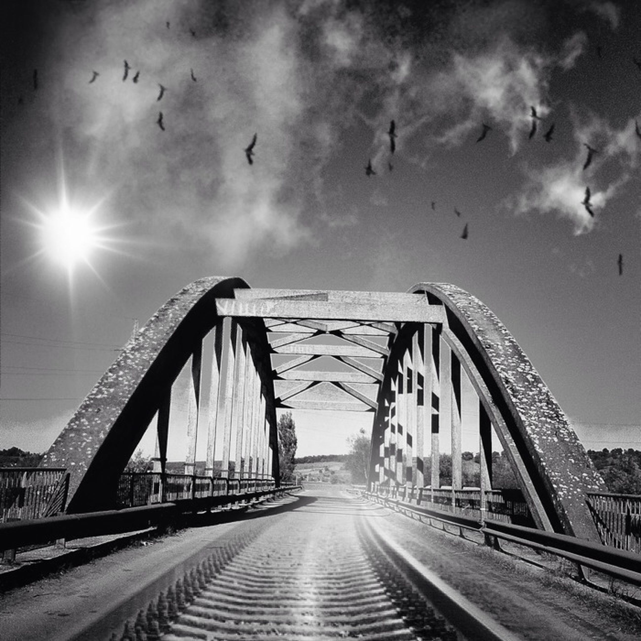 bird, the way forward, sky, built structure, architecture, transportation, diminishing perspective, connection, bridge - man made structure, animal themes, vanishing point, cloud - sky, railing, sun, wildlife, animals in the wild, flying, sunlight, nature, outdoors
