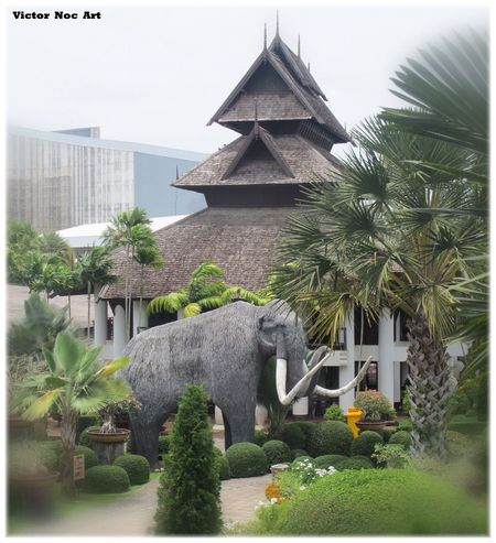 Victor Noc Art 🎱 Nong Nooch Tropical Bothanical Garden Thailandia 2016 Pattaya City VictorNocArt VicNocArt Vittorio Nocente