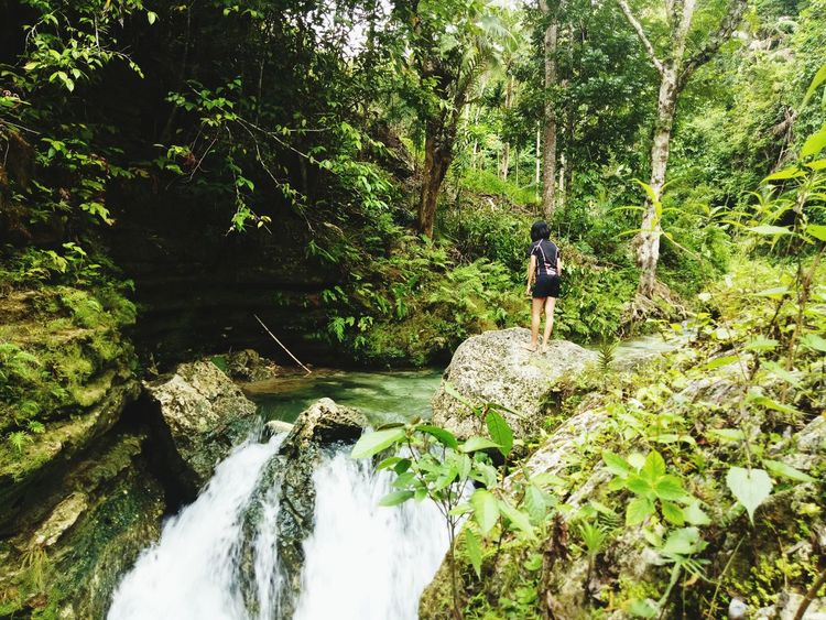 My Year My View Nature Growth Tree Beauty In Nature Real People Green Color Freshness Water Chasing Waterfalls Waterfalls In Philippines