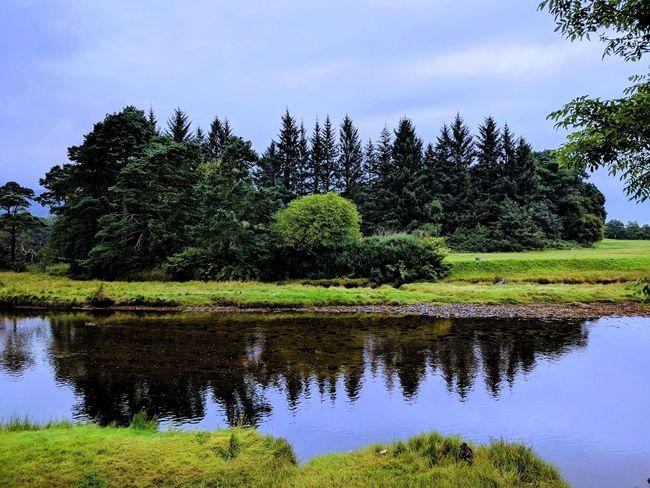 The view from the garden of the Old Wooden House in Brodick Arran  Brodick BrodickCastle Castle Hills Hillwalking Lochranza Scotland Scottish Whisky Cask Distillery Heather Hill Island Isleofarran