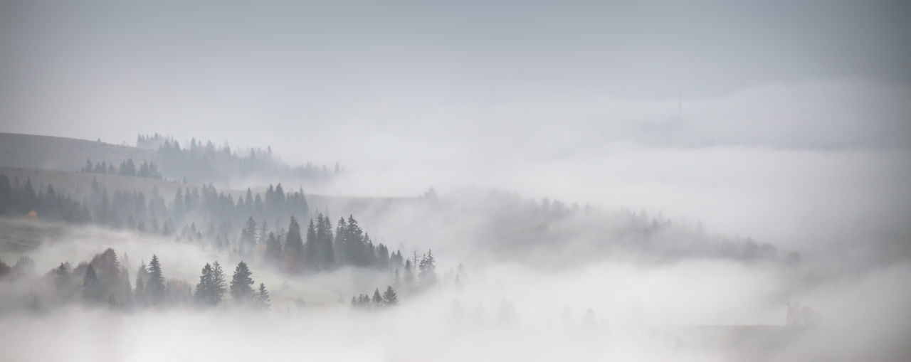 Panoramic view of landscape in foggy weather
