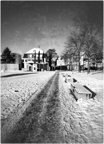 Staatstheater Snow Monochrome Winter Winter Wonderland