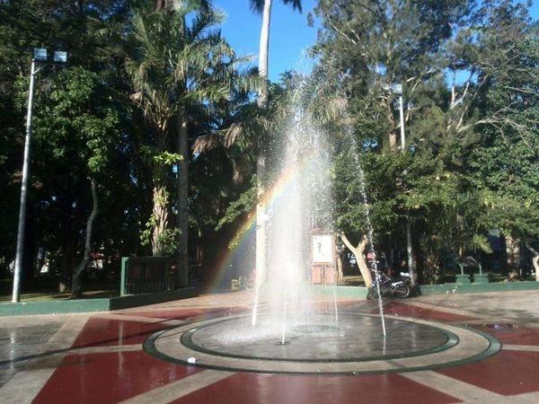 AI Now! Fountain Spraying Tree Outdoors Motion Long Exposure Day