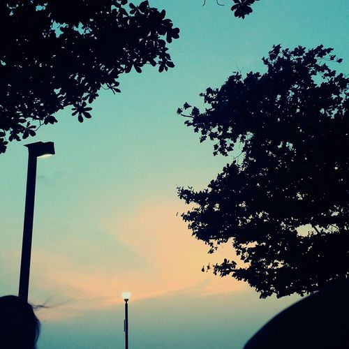Relaxing Beautiful Sunset