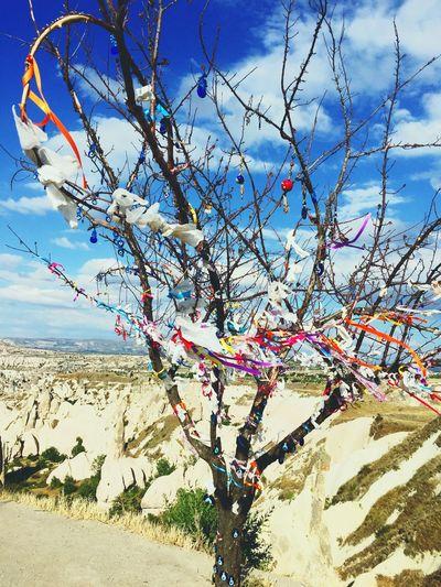The Past Picture Nature Beauty In Nature NevşehirKapadokya Nevşehir ürgüp Cappadocia Hot Air Ballons Best Of EyeEm EyeEm Cappadocia/Turkey Cappadociafanpage Cappadocia Turkey History Wish Tree Wish Tranquility Tranquil Scene Nature Tourism