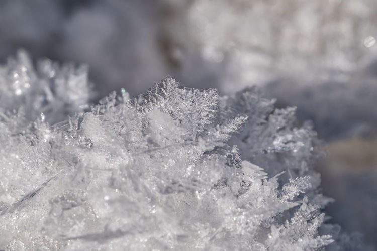 Ice crystals Ice Crystals Snowflake Cold Temperature Winter Snow Ice Frozen Close-up Crystal Nature No People White Color Focus On Foreground Beauty In Nature Day Plant Frost Selective Focus Outdoors Fir Tree Blizzard Extreme Weather Ice Crystal Coniferous Tree Frozen Water Alps Tirol  Austria