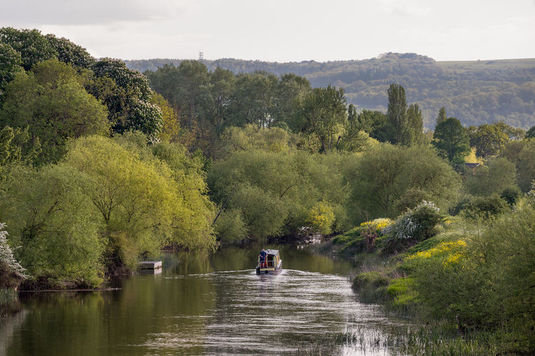 A lone man steers his canal narrow boat along the river Avon in Worcestershire, England. Beauty In Nature Canal Change Day Forest Growth Lifestyles Mode Of Transportation Narrow Boat Nature Navigating Non-urban Scene Outdoors Plant Real People River Scenics - Nature Sky Tranquil Scene Tranquility Transportation Tree Water Waterfront