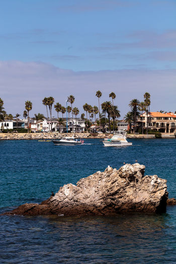 Boat leaving the harbor in Corona del Mar, California in summer Boat California Corona Del Mar Day Harbor No People Ocean Orange County Outdoors Sail Sea Summer United States Water Waterfront