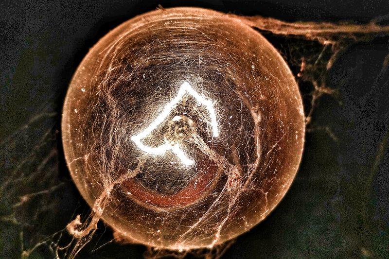 Lowlightphotography Lowlight Lowlightimage Lowlightshot Spider Web Bulbs Light Bulbexposure Old-fashioned Vintage Web Arachnid