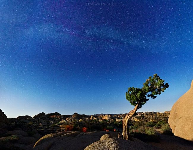 Our Little Universe Under The Milky Way Roadtrippin Desert Beauty EyeEm Nature Lover Nature_collection Landscape_Collection