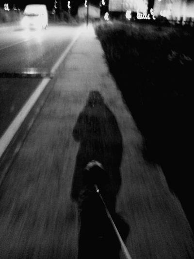 Walk at night Notalone Truefriend BlackDog Shadows & Lights Blackandwhite Photography