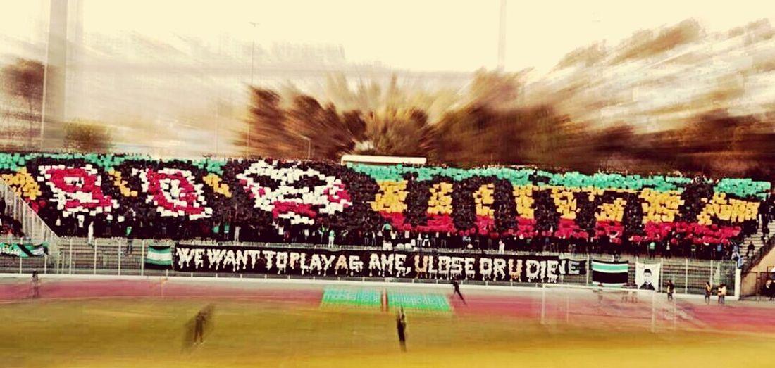 Tifo CS Constantine 90 Min Saw Face Stade Chahid Hamlaoui