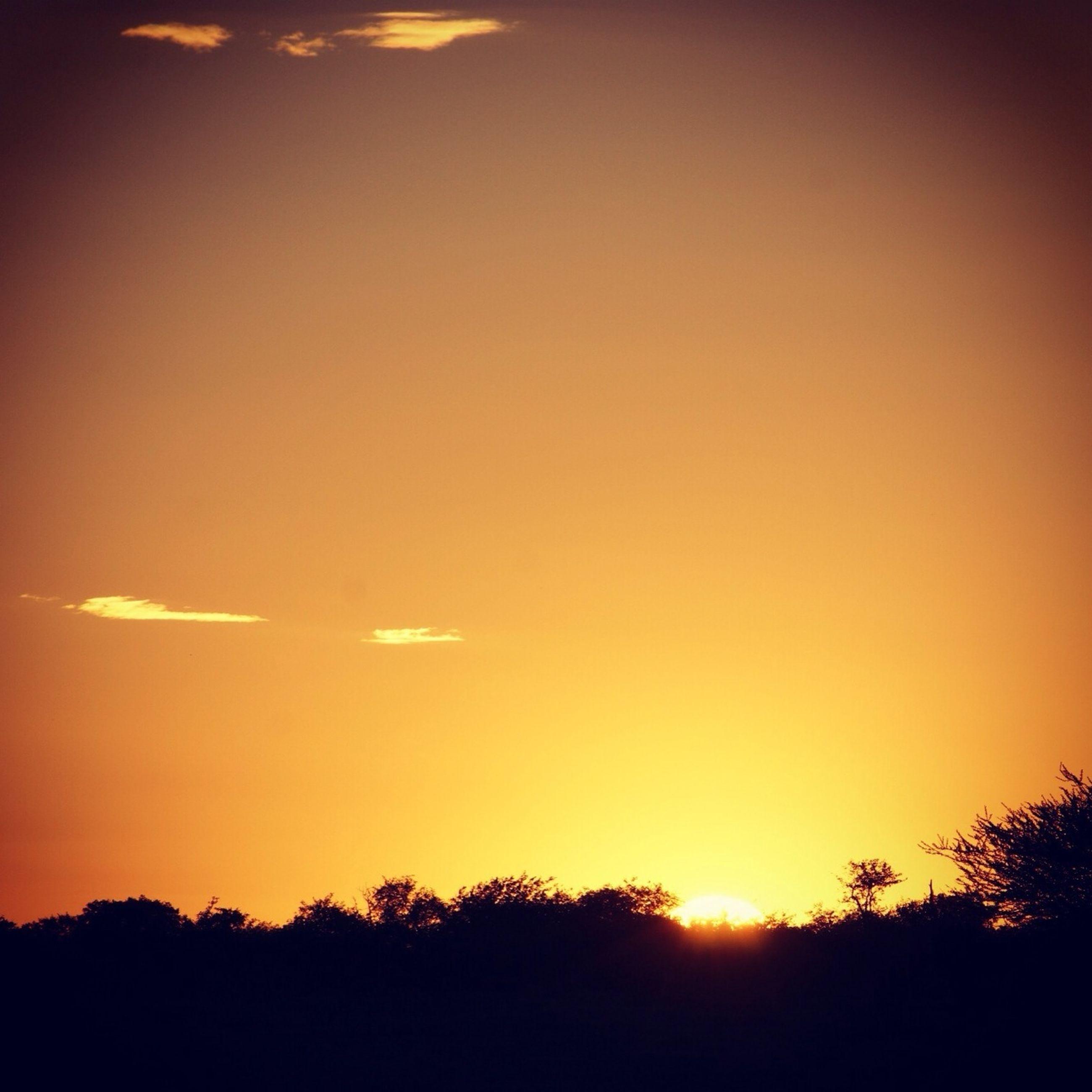 sunset, silhouette, sun, orange color, scenics, beauty in nature, tranquil scene, tranquility, idyllic, tree, nature, sky, sunlight, landscape, copy space, clear sky, outdoors, no people, majestic, dark