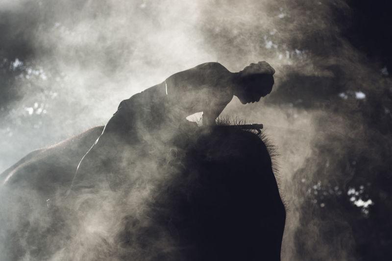 Silhouette man on elephant amidst fog