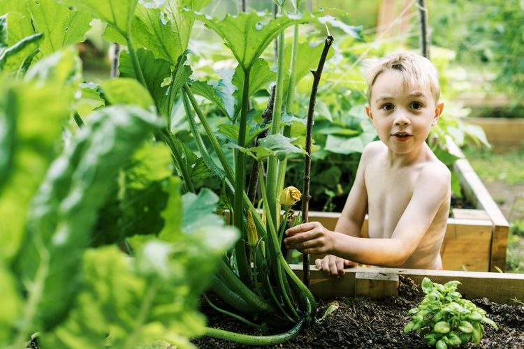 Portrait of shirtless boy sitting outdoors