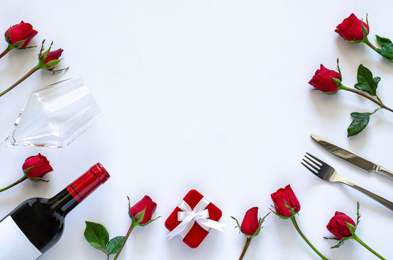 High angle view of roses against white background