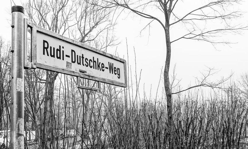 Berlin Photography Berliner Ansichten Black & White Black And White EyeEm Best Edits EyeEm Black&white! Political Rudi Dutschke Schild Sign Straßenschild Street Sign Trees Urban Exploration Zehlendorf