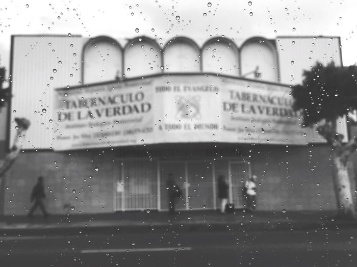 Rain Los