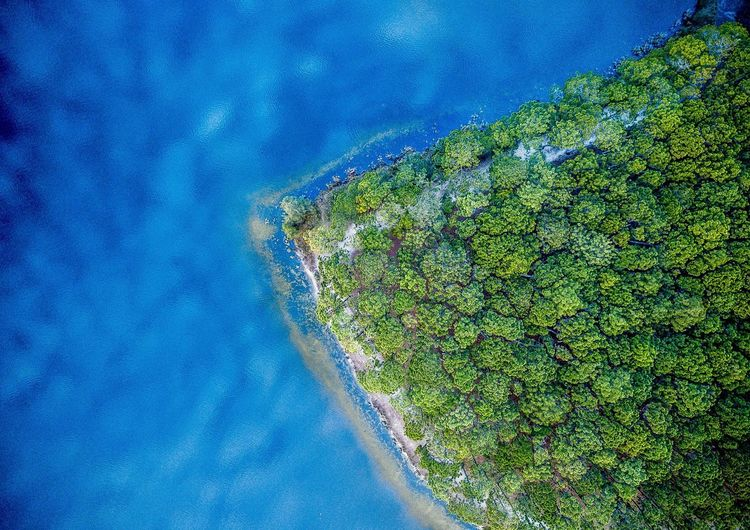 Blue Water No People Nature Day High Angle View Plant Green Color Beauty In Nature Full Frame Scenics - Nature Land Tranquility Backgrounds Outdoors Tranquil Scene Growth Sea Aerial View