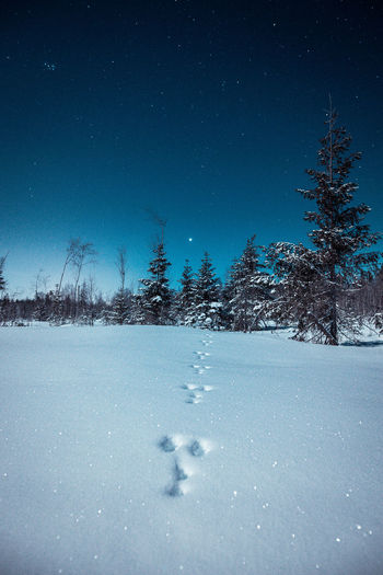 Snow covered land against sky at night