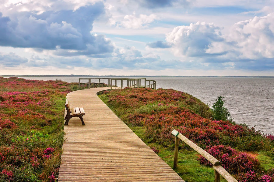 Morsum Cliff, Sylt Morsum-Kliff Sylt, Germany Cloud - Sky Germany Heather Horizon Over Water Morsum Nature No People Outdoors Railing Sea Sylt The Way Forward Travel Destinations Water