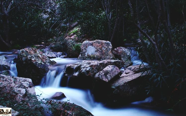 Waterfall Long Exposure Motion Water Nature Beauty In Nature Scenics No People Relaxing Sardegna Sardinia Sardegna Italy  Sardegnaofficial Photography Photo Photooftheday Landscape Vacations Tree Freshness Water_collection