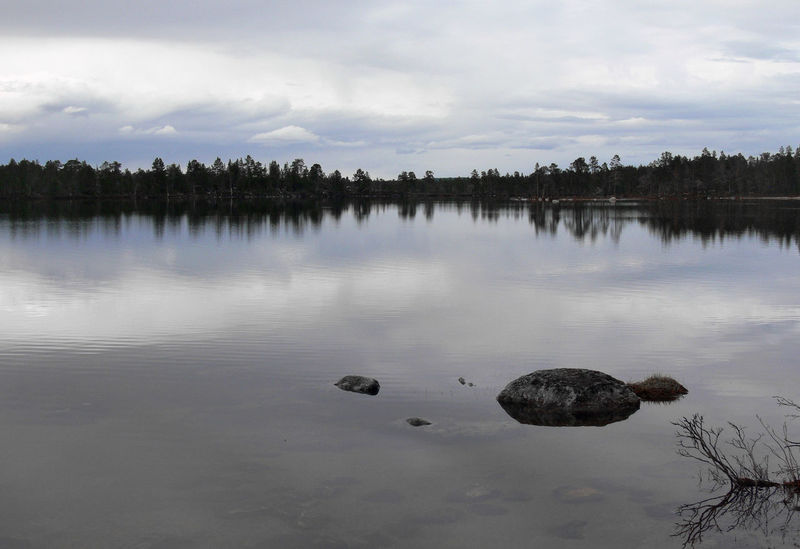 The amazing Inari Lake, Lapland on a cloudy day Beauty In Nature Cloud - Sky Day Finland Inari Lake Lapland Nature No People Outdoors Reflection Scenics Silence Sky Stone Tranquil Scene Tranquility Tree Water