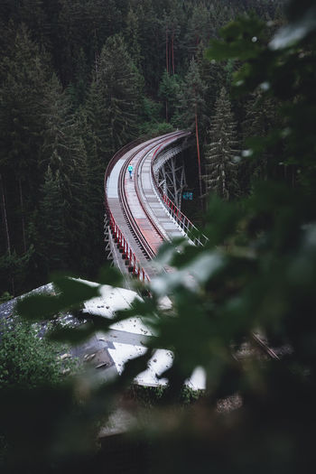 High angle view of railroad track amidst trees in forest