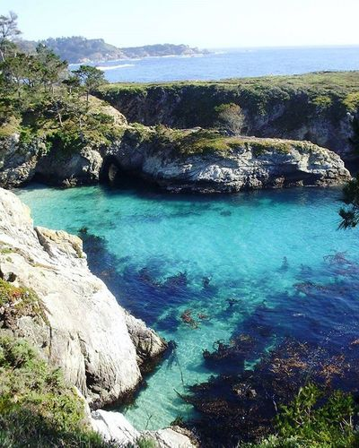 China Cove is so beautiful (picture taken in 2010) Pointlobos Pointlobosstatereserve Chinacove Carmelbythesea California Gorgeous Naturesbeauty Ocean Beach Iwanttodivein Clearwater Terquoise Pacific Pacificocean Sea Hikingbythesea Pacificcoast @natgeotravel