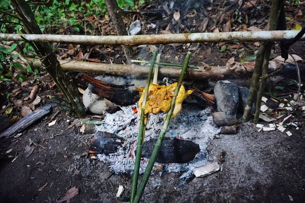 Butterfly chicken bbq Bamboo Green Bamboo Campfire Night Fire Dinner BBQ Slow Cooking Chicken Butterfly Chicken