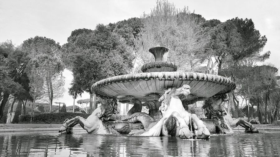 Fountain Roma Blackandwhite Photography by Danieledonofrio