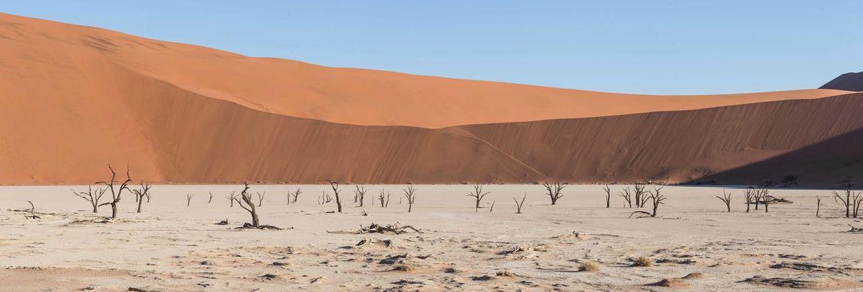 Desert Sossusvlei
