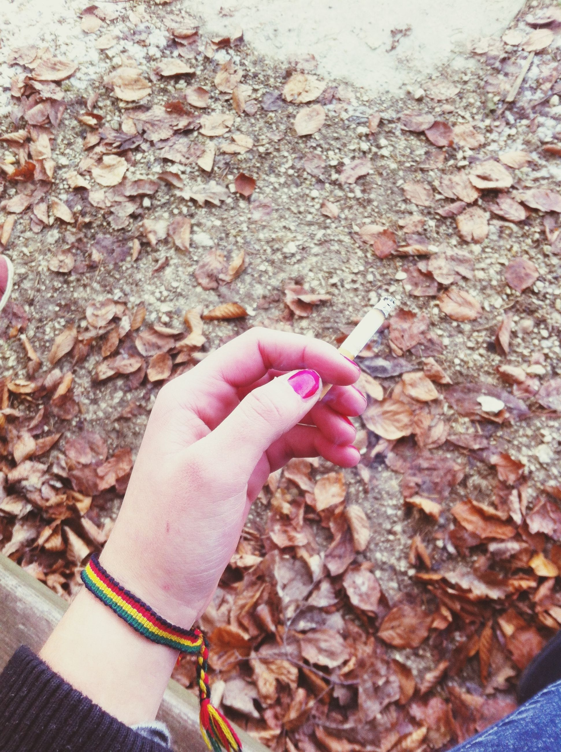 person, leaf, personal perspective, high angle view, dry, autumn, holding, part of, food and drink, cropped, lifestyles, freshness, change, human finger, unrecognizable person, day, directly above