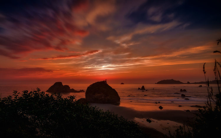 Pacific Ocean and sunset California Surf Beauty In Nature Cloud - Sky Day Horizon Horizon Over Water Nature No People Ocean Orange Color Outdoors Pacific Ocean Rock - Object Scenics Sea Sea And Sky Seascape Sky Sunset Surfing Tranquil Scene Tranquility Tree Water