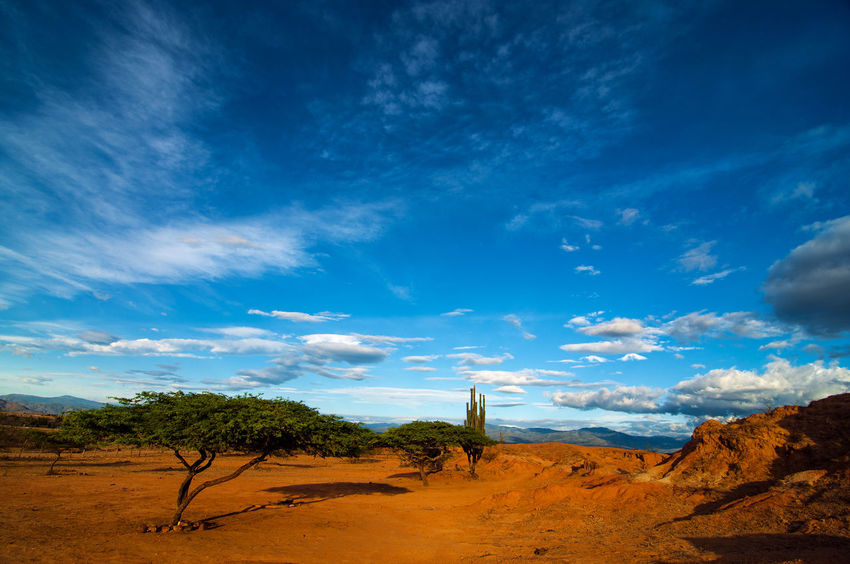 A dry desert landscape shot near dusk. Arid Climate Clouds Colombia Desert Desolate Drought Dry Heat Hot Huila  Idyllic Land Landscape Nature Outdoors Sand Scenics Shrub Sky Blue South America Tatacoa Tourism Travel View Wilderness