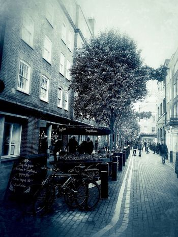 Neal street Covent Garden London Nov 2017 Neal's Yard Covent Garden  London Building Exterior Architecture Tree Built Structure Day Outdoors Real People City Men Sky People