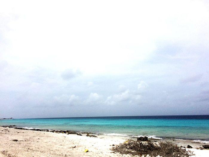 Bonaire EyeEm Ready