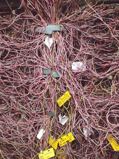 Close-up high angle view of sticks