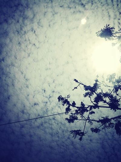 !!sky