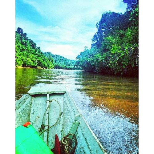 My dad is at our hometown now. He sent us this picture early in the evening. I miss the fresh air and the green. 💜💜💜💜 Hometown Homesick  Sarawakian Sarawak malaysia asia southeastasia travel trip localtour instatravel sampan river green rainforest borneo