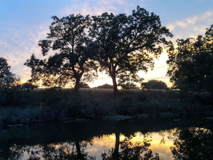 Sunset Sunset Creek Beauty In Nature Texas Landscape Texas Hill Country Tree Water Pixelated Sunset Tree Area Lake Silhouette Reflection Forest Sky Reflection Lake Tranquil Scene
