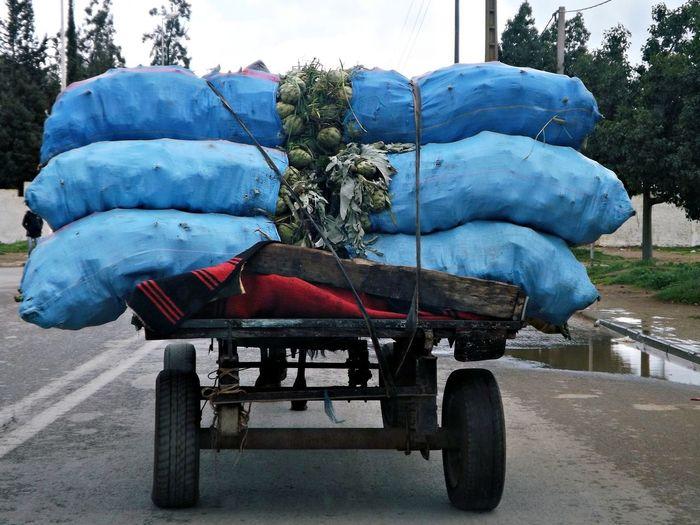 Roues Transporter Bleu Caisse Chariot Day Emporter Légumes Légumes Frais Marchandise No People Outdoors Rouler Transportation Voiture