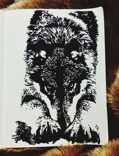 Wolf Drawing Art Freehandsketch Freehand