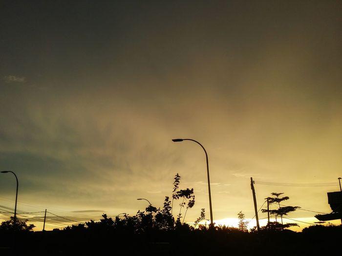 'Yellow' Sunset Black Sunset Sunsets Yellow Yellow Sunset Cloud View Tree Sunset Silhouette Sky Dramatic Sky Atmospheric Mood Romantic Sky EyeEmNewHere