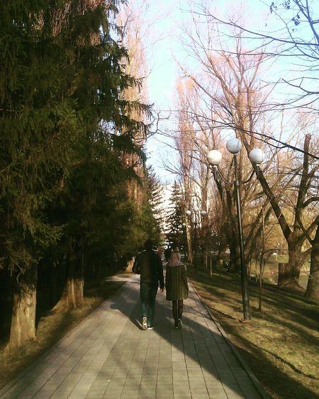 Погода весна Spring Walk Nature Walking Outdoors Way Park Belgorod Trees Day Warm Green Black EyeEmNewHere Long Goodbye