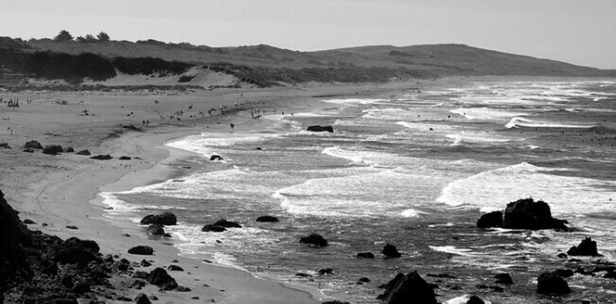 Beach Scene Check This Out Hello World EyeEm Nature Lover Life Is A Beach California Black And White Sonoma Coast