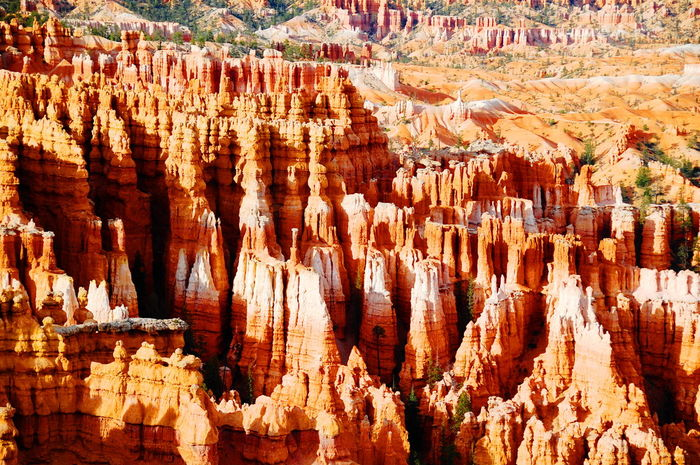 Bryce Canyon Canyon Cave Cliff Extraordinary Nature Famous Place Geology Natural Beauty Physical Geography Rock Rock - Object Rock Formation Rocky Rocky Mountains Rugged Showcase: November Travel Destinations