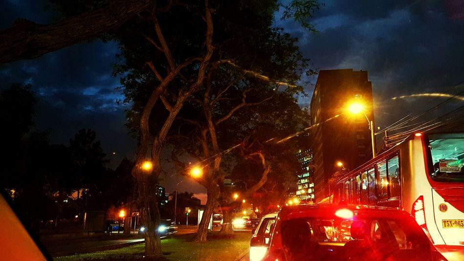 Night City Street Sky Tree Car