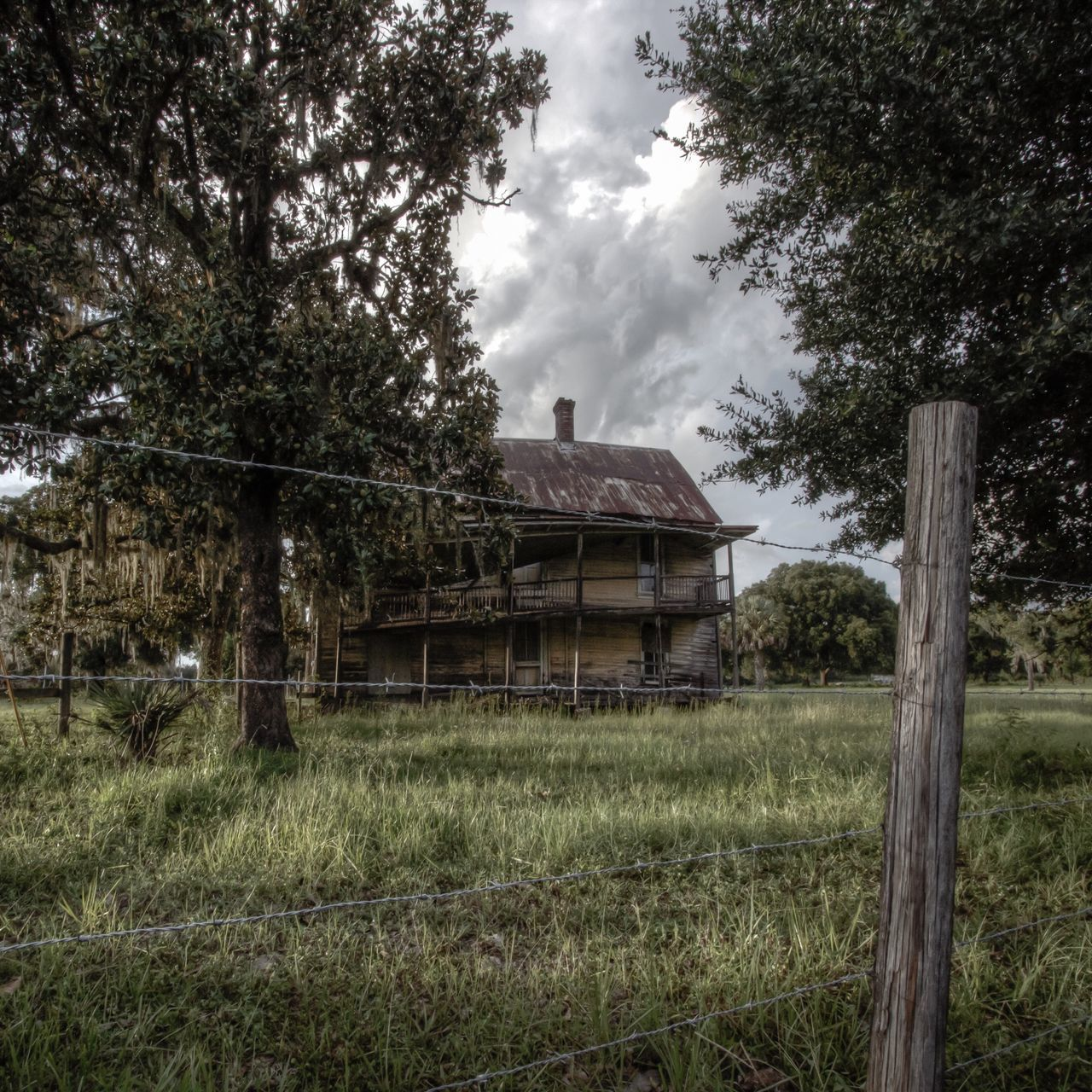 tree, architecture, built structure, house, building exterior, no people, grass, day, abandoned, growth, field, outdoors, sky, nature